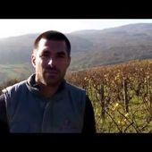DOMAINE CHAGNOLEAU, VIDEO - Emmanuel Delmas, Sommelier Consultant, Paris