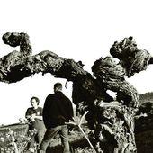 Binet x Jacquet Die Weinbauern