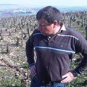 DOMAINE POMMIER, CHABLIS - Emmanuel Delmas, Sommelier & Consultant en vins, Paris
