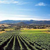 VINS AUSTRALIENS - Emmanuel Delmas, Sommelier & Consultant en vins, Paris