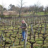 DAMIEN BRIARD, BORDEAUX - Emmanuel Delmas, Sommelier & Consultant en vins, Paris