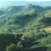 Barolo: Terre de vins
