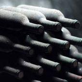 CONSERVATION DU VIN - Emmanuel Delmas, Sommelier & Consultant en vins, Paris
