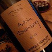 SAUMUR CHAMPIGNY 2012, ANTOINE SANZAY - Emmanuel Delmas, Sommelier & Consultant en vins, Paris