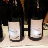 VINS (BIODYNAMIQUES) BUS RECEMMENT # 3 - Emmanuel Delmas, Sommelier & Consultant en vins, Paris