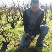 FRANTZ CHAGNOLEAU, MACON - Emmanuel Delmas, Sommelier & Consultant en vins, Paris