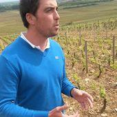 DOMAINE BOULEY, VOLNAY - Emmanuel Delmas, Sommelier & Consultant en vins, Paris