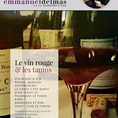MAGAZINE PEDAGOGIQUE: 'LE VIN ROUGE ET LES TANINS' - Emmanuel Delmas, Sommelier & Consultant en vins, Paris