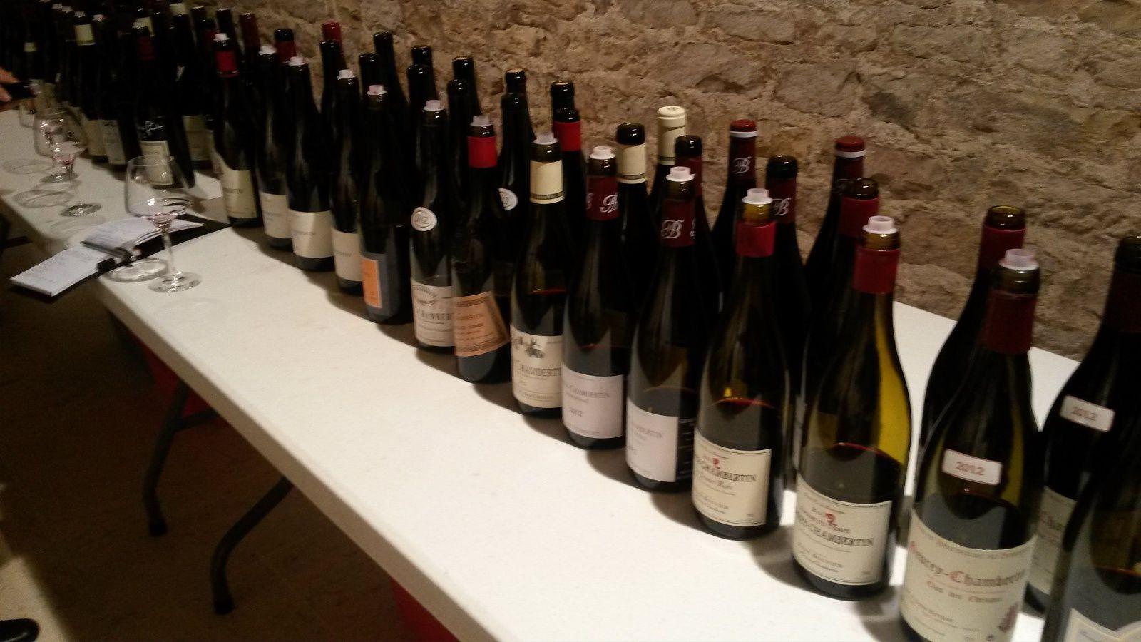 La dégustation des vins de Gevrey Chambertin 2012