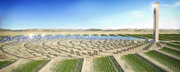 Utiliser la force solaire afin d'implanter de la végétation dans des coins pourtant arides...© Sciencesbuzz.org